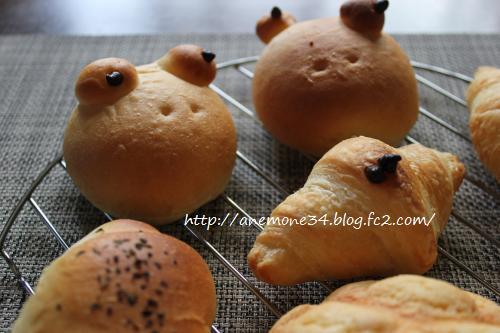 パスコかえるパン3