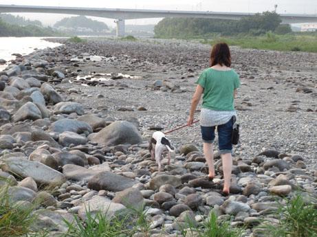 2013 8 14ココアと長良川10