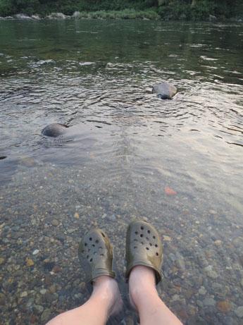 2013 8 14ココアと長良川13