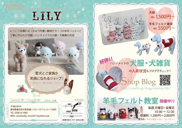 lilyf.jpg