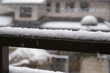140208雪