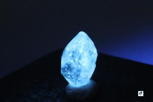 pakisutan-oil-in-quartzrsp002.jpg