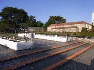 20130919階段塗装後 (2) - コピー