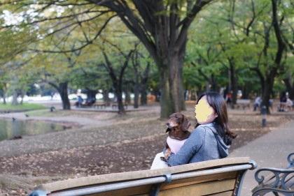 代々木公園8
