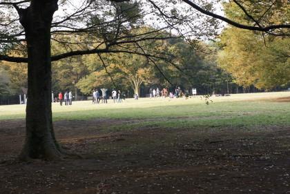 代々木公園10