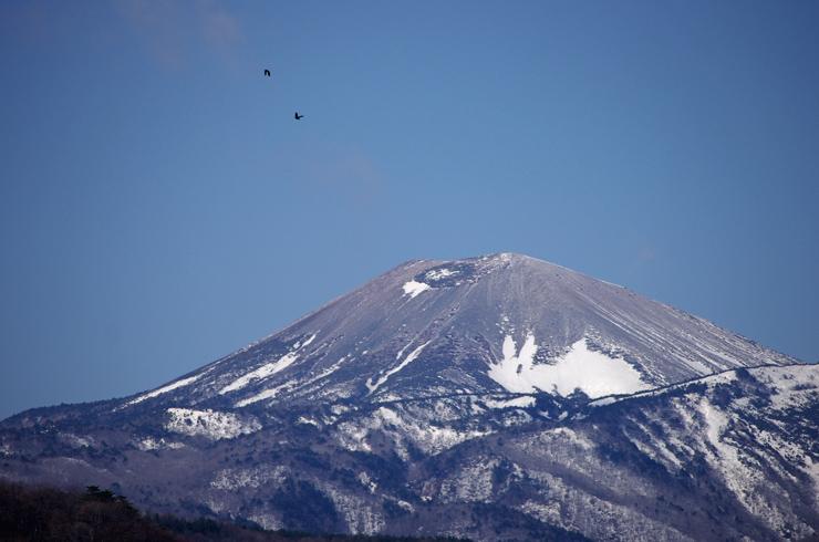 2013.April.01 雪うさぎ