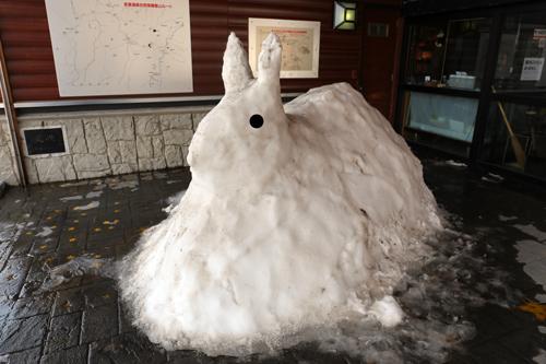 浄土平の雪兎