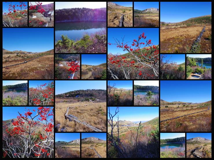 2013.11.05 本日の桶沼周辺