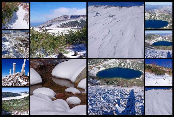 2013 初冬の切り抜き