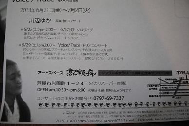 DSC_2891.jpg