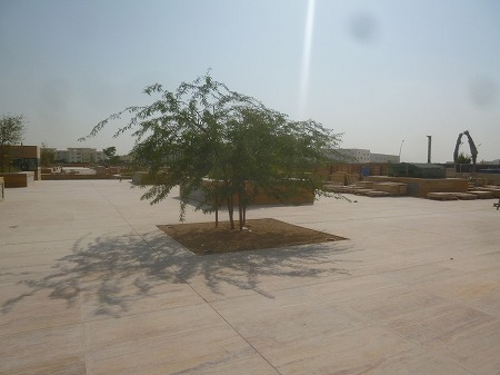 ねむの木のような木