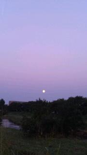 お月さま。