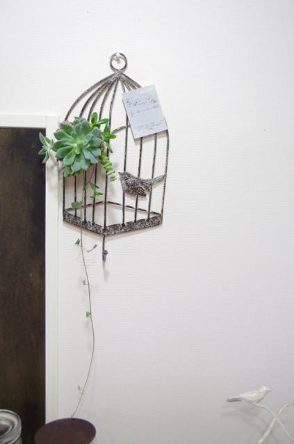 小鳥のアイアンフレームと多肉植物p1