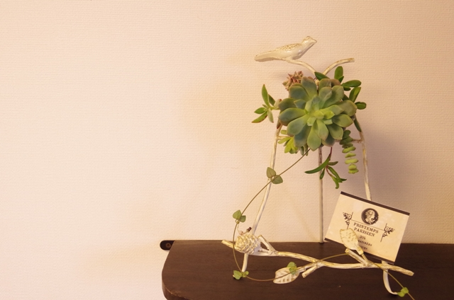 小鳥のアイアンフレームと多肉植物p11