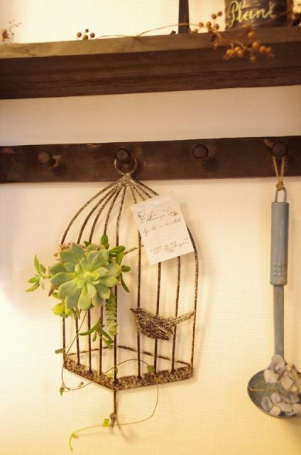 小鳥のアイアンフレームと多肉植物p8