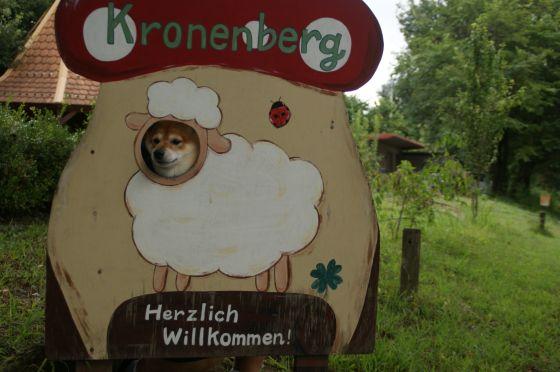 93 赤城高原ドイツ村クローネンベルク
