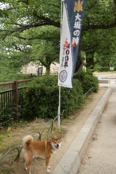 180 大阪城
