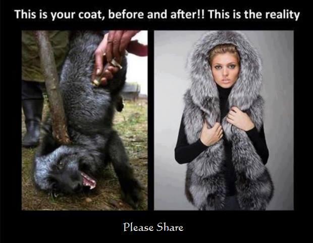 あなたのコートのビフォーアフター