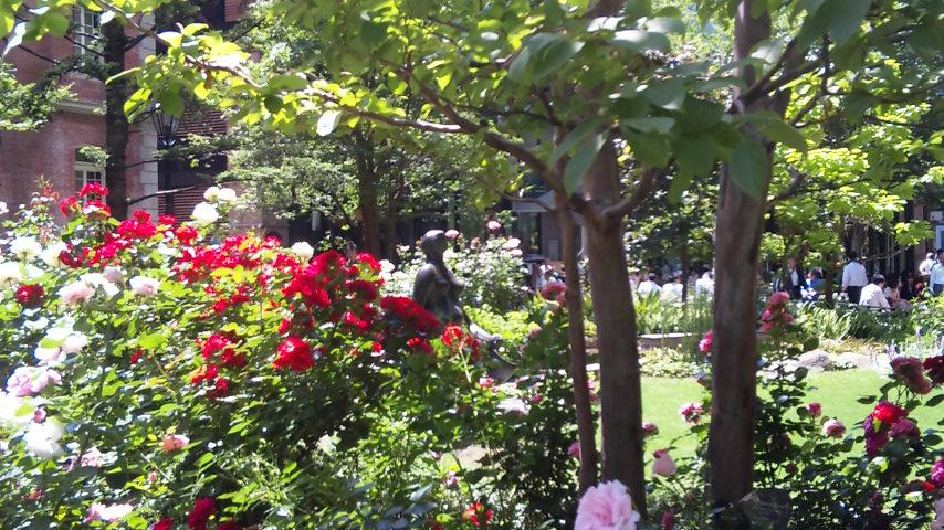 憩い バラの庭