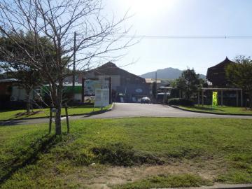 DSCN4947.jpg