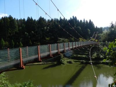 新潟遠征下条川03