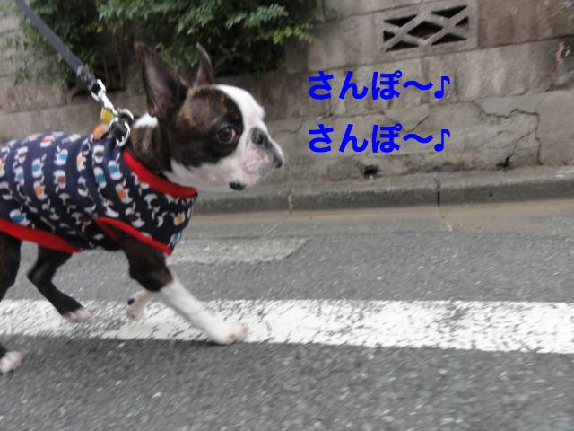DSC07514_Fotor.jpg