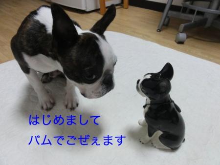 DSC07542_Fotor.jpg