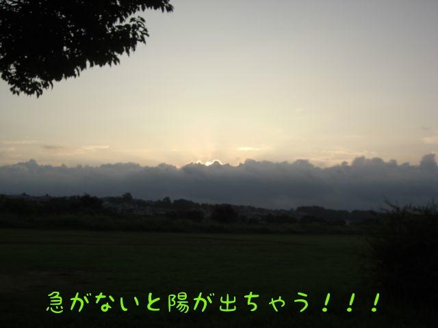 CIMG3171.jpg