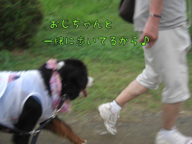 CIMG3487.jpg