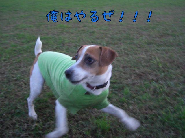 CIMG5132.jpg