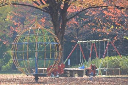 秋の公園。_800