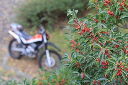 バイクと。_800