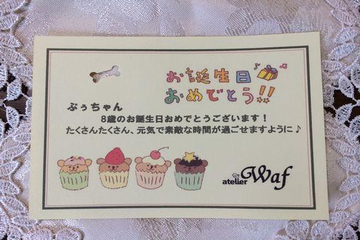 015-card.jpg
