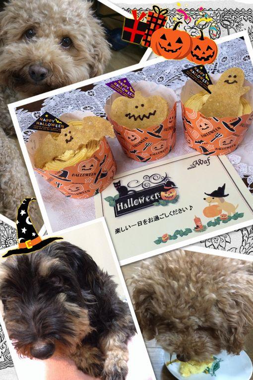 ハッピーハロウィン☆ワンちゃんケーキ♪