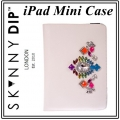 iPad Mini Rainbow Case (2)111