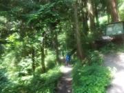 ハイキングコースで下山