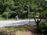本栖みちを走るサイクリスト