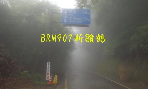 BRM907東京200km新雛鶴