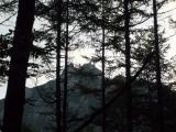 木々の間から見える瑞籬山