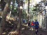中尾根登山道を登る