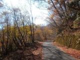 櫛形山林道を登る