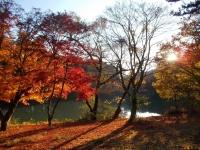 北伊那ケ湖の紅葉