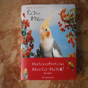 P1280910_convert_20140128135507.jpg