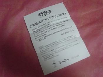 DSC10496 (8)