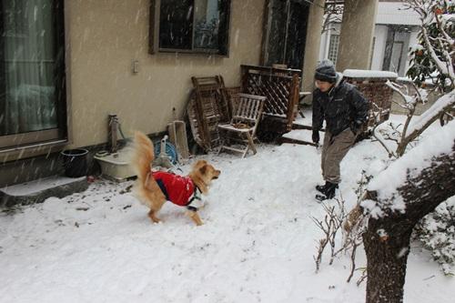 IMG_9625雪