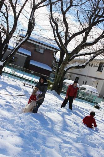 IMG_9721雪