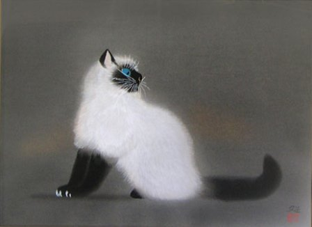kayama_cat[1]