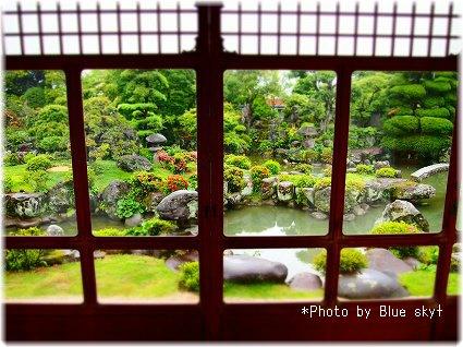 5茶室からの庭園