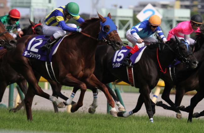 安田記念レース1