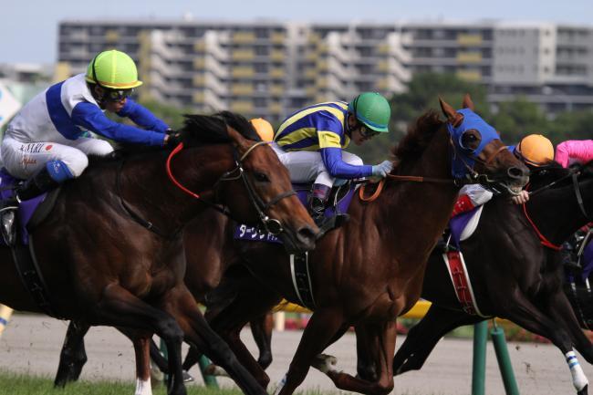 安田記念レース2